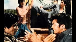 Герой - одиночка  (боевые искусства 1973 год)