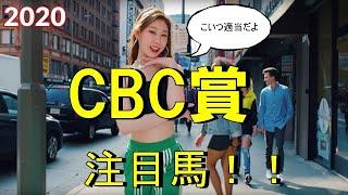 【CBC賞2020】 いまむらの注目馬 阪神開催ですよー