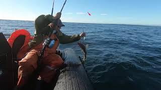 Морская рыбалка 13 06 20 14 06 20