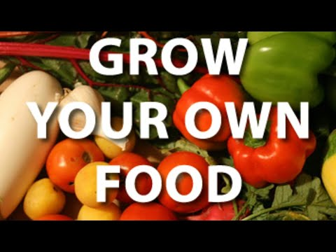 SURVIVALISTS PREPPERS ORGANIC HEALTHY FOOD Learn How to grow your own food to survive a Famine.