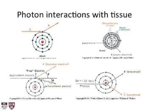 Lecture 2 - Introduction to Radiation Biology and Physics