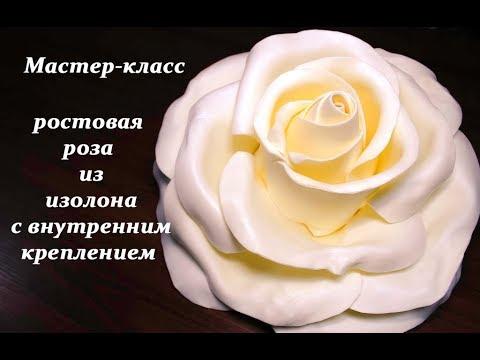 видео: Ростовая роза из изолона. giant rose. Ростовые цветы. flor gigante