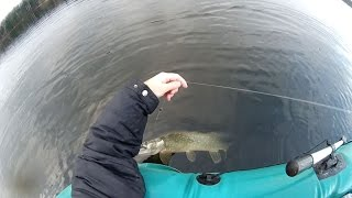 Запоздалая щука на кружки и спиннинг (видео-отчет) рыбалка ноябрь 2015 Ловля щуки поздней осенью.