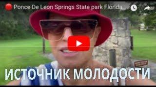 🔴 Ponce De Leon Springs State park Florida USA 🔴 Молодильный Источник 27.07.2019