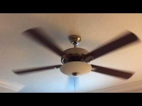 Nurtured, Clean Ceiling Fan