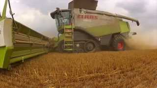 Harvest 2013 - Huge farm in eastern Germany 4x Lexion 600, 10 John Deere tractors