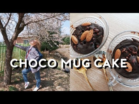 Korean Vlog: Cooking Vegan Choco Mug Cake + Favorite IG Story App | DTV #99