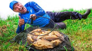 Рыбалка 2020 ЛОВЛЯ КАРАСЯ на фидер не БЕШЕНЫЙ КЛЕВ Feeder fishing tv фидер 2020