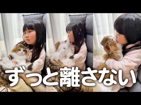 こたつでアニメを見る娘に離してもらえない猫 #short