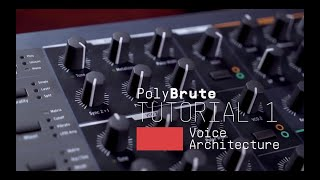 Tutorials | PolyBrute - Episode 1: Voice Architecture