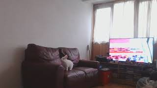 Just watching tv