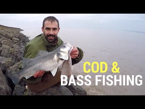 Fishing Brothers: Bass And Cod Fishing South Wales