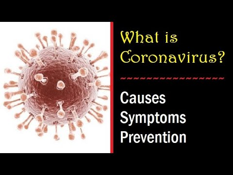High Alert!!! Know About China's Deadly Coronavirus   Causes, Symptoms & Treatment