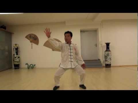 Zhu Xinhua - Tai Chi Chen 1/2