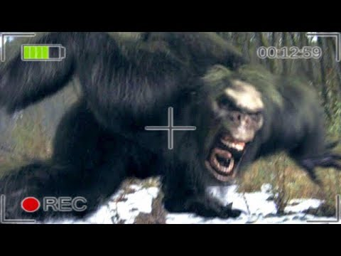Brutaler BigFoot Angriff gefilmt - Bigfoot Gameplay German