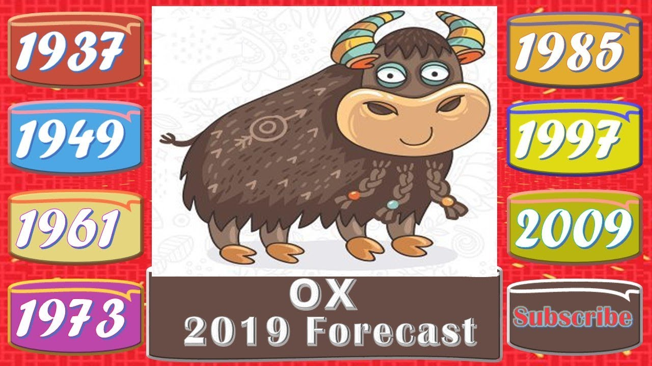 Ox Horoscope 2019 | Born 1937, 1949, 1961, 1973, 1985, 1997, 2009