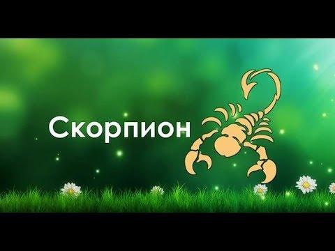 Ведическая астрология.Знаки зодиака.Скорпион