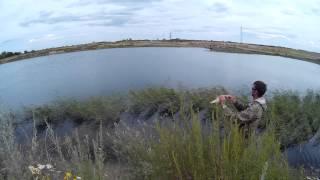 Рыбалка на карьере Бакал 08.07.15