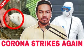 Corona Strikes Again | Tamil | Madan Gowri | MG