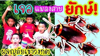เช ชิล ผจญภัยเขาวงกตเจอแมลงสาบยักษ์!