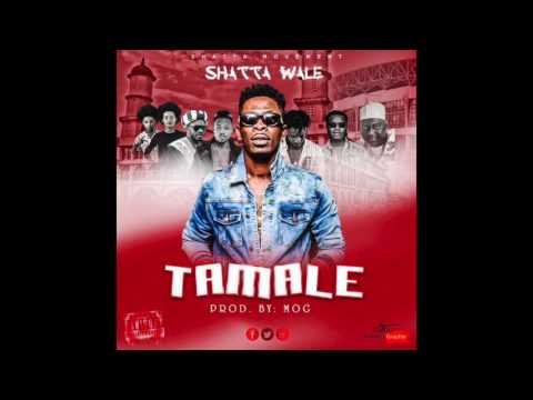 Shatta Wale - Tamale (Audio Slide)