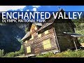 Hiking to the Enchanted Valley Chalet - Olympic National Park, Washington State