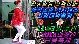 💗버드리 깜짝놀랄 가슴심쿵대박 웃음폭탄💗 11월3일 주간 2018 내장산 단풍축제 초청 공연