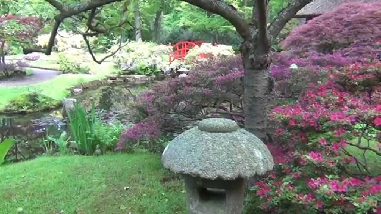 Zen Tuin Aanleggen : Zen tuin. stunning poster zentuin harkte de stenen van de ryoanji