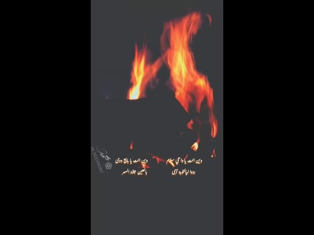 سج ة شب يت ضو ي في الظلام في صحصح ذيبه عـوى Youtube