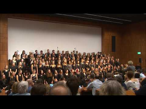 Snow Patrol - Run (Zurich University of Teacher Education Choir)