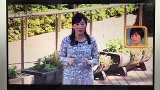 NHK今日お昼の 「ひるまえほっと」 という番組内の「1分ほっと」という...