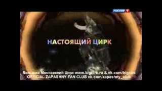 Диалоги о животных. Черно-белые собаки Дарьи Костюк (1.06.2013)