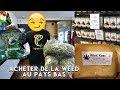 J'ai acheté du cannabis a Amsterdam ? VLOG / ROAD TRIP / PAYS-BAS / BELGIQUE