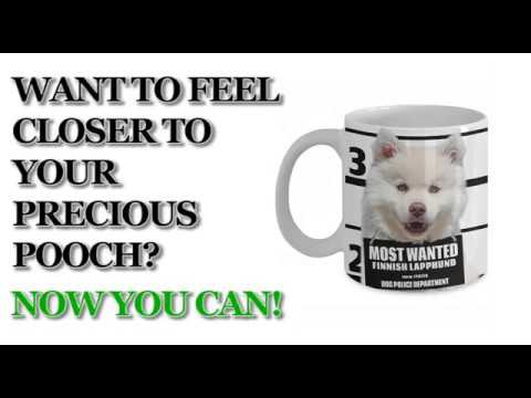 Most Wanted Finnish Lapphund – 11oz White Ceramic Coffee Mug