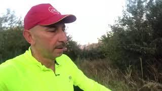 Скандинавская ходьба Кривой Рог утренние Тренировки