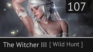 Прохождение The Witcher 3: Wild Hunt [Эхо прошлого.  Пропал человек. Безымянный] #107