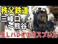 秩父鉄道 SLパレオエクスプレス自由席乗車記 C58+12系客車【1905埼玉2】長瀞駅→熊谷…