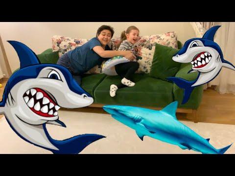 Köpekbalığı Saldırısı  Funny Kids Video