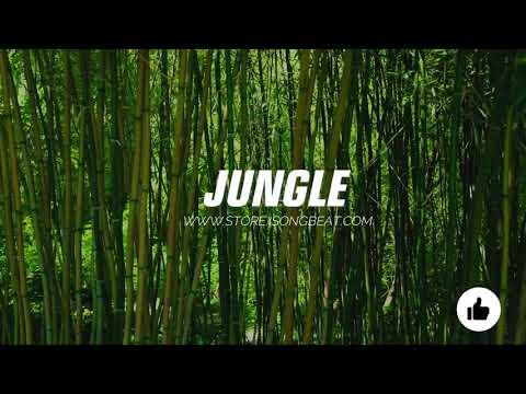 "Download [SOLD] ""Afrobeat Instrumental 2021"" Jungle | Davido x Kizz Daniel Type Beat"