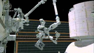 Space Station Robotic Handyman To Replace Canadarm2 Camera | Video