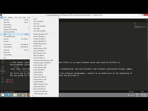 HTML Tutorial - Part  2 (Paragraph and PRE Tags) thumbnail