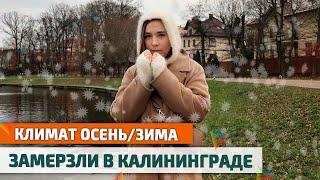 Как ВЫЖИТЬ ЗИМОЙ в КАЛИНИНГРАДЕ дождь ветер холод Погода Калининградской области