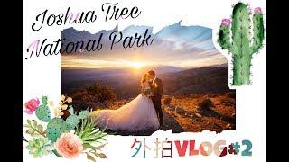 【SHMILY外拍vlog#2】Joshua Tree National Park 约书亚树国家公园 | 洛杉矶婚纱旅拍vlog,带着婚纱去旅行✈️ 🧳  | 沙漠仙人掌🌵 你不知道的高危行业❓