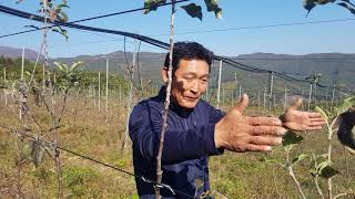 이명우 농부의 일상 이야기 충북농업마이스터대학 제3강의