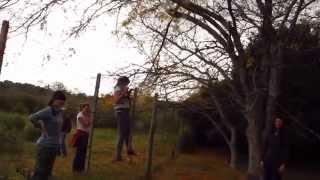 Saltando un alambrado para robar renovales de ligustro en una reserva no intangible
