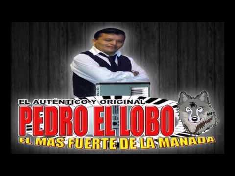 A-CABALLITO-DE-PALO-PEDRO EL LOBO