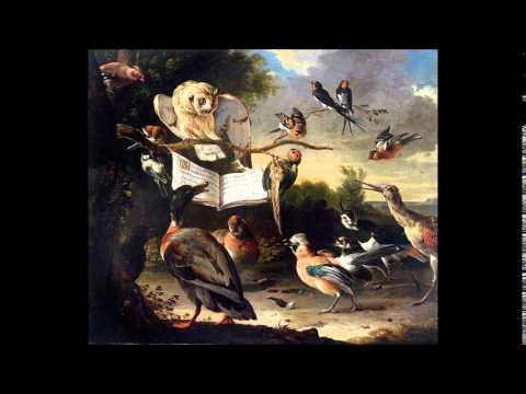 Marco Uccellini Violin Sonatas