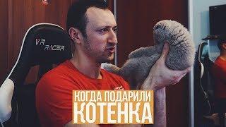 Download КОГДА ПОДАРИЛИ КОТЕНКА Mp3 and Videos