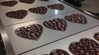 ORICS S-30 1x3 Heart-Shaped chocolate Candy Tray Sealing machine