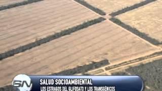 GLIFOSATO Y TRANSGÈNICOS  ANDRÉS CARRASCO INV  CONICET